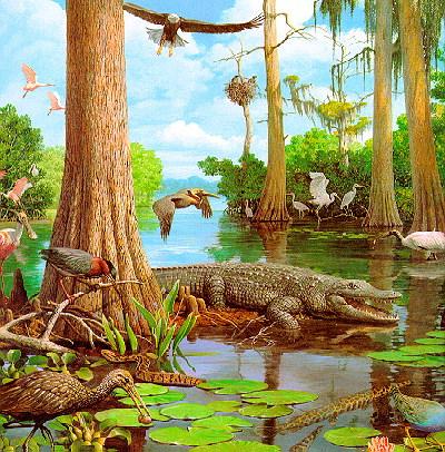 Картинки про людину і природу